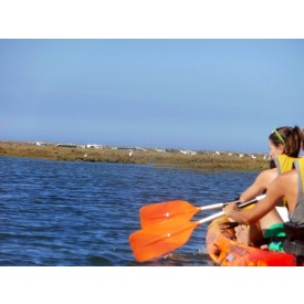 Kayak Tour - 2 Hours